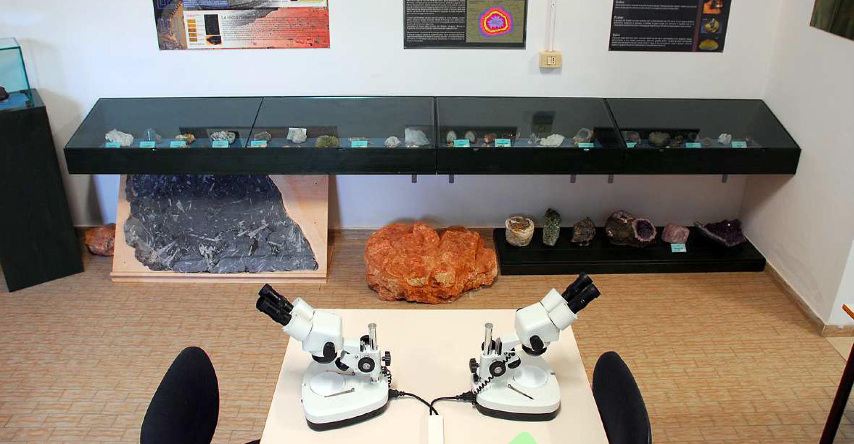 Museo Paleoantropologico - San Daniele Po